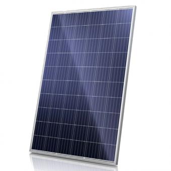 Solar Modul CanadianSolar Poly 290Wp 60 Zellen (CS6K-290P)